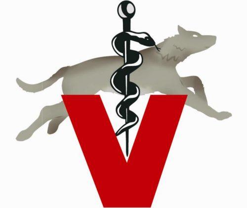 Logo_Hund